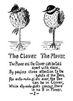 Cloverplover