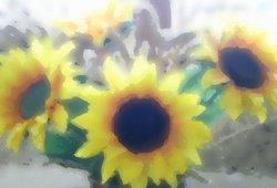 Plasticflowerscropped_1